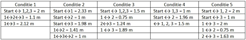 tabel_conditie_intelligentie_katten